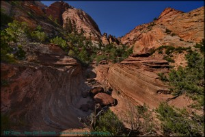 1-2-20-national-park-zion.jpg